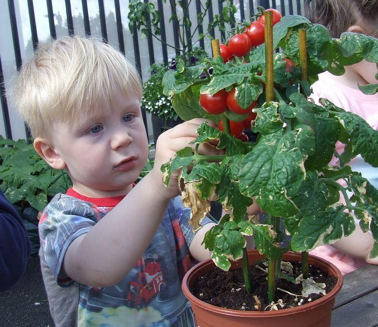 Some of our top tips for gardening with children! https://www.giraffe.ie/easy-gardening-tips-for-children/?utm_content=bufferd71fa&utm_medium=social&utm_source=pinterest.com&utm_campaign=buffer #gardening #growityourself #giy