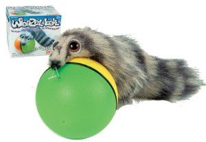 An electronic weasel ball! The weasel is attached to the ball and rolls along with it. Great company for a ferret. #affiliatelink