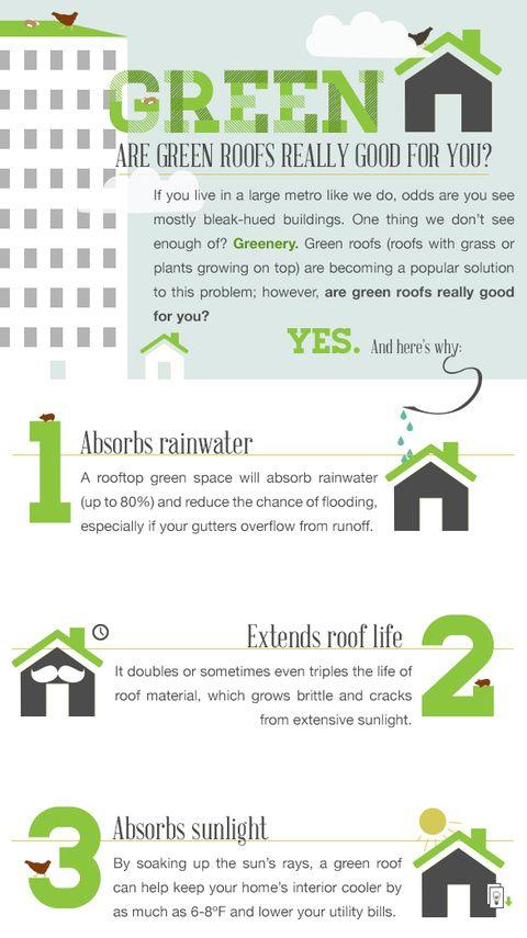 17 best images about garden vertical roof top on. Black Bedroom Furniture Sets. Home Design Ideas