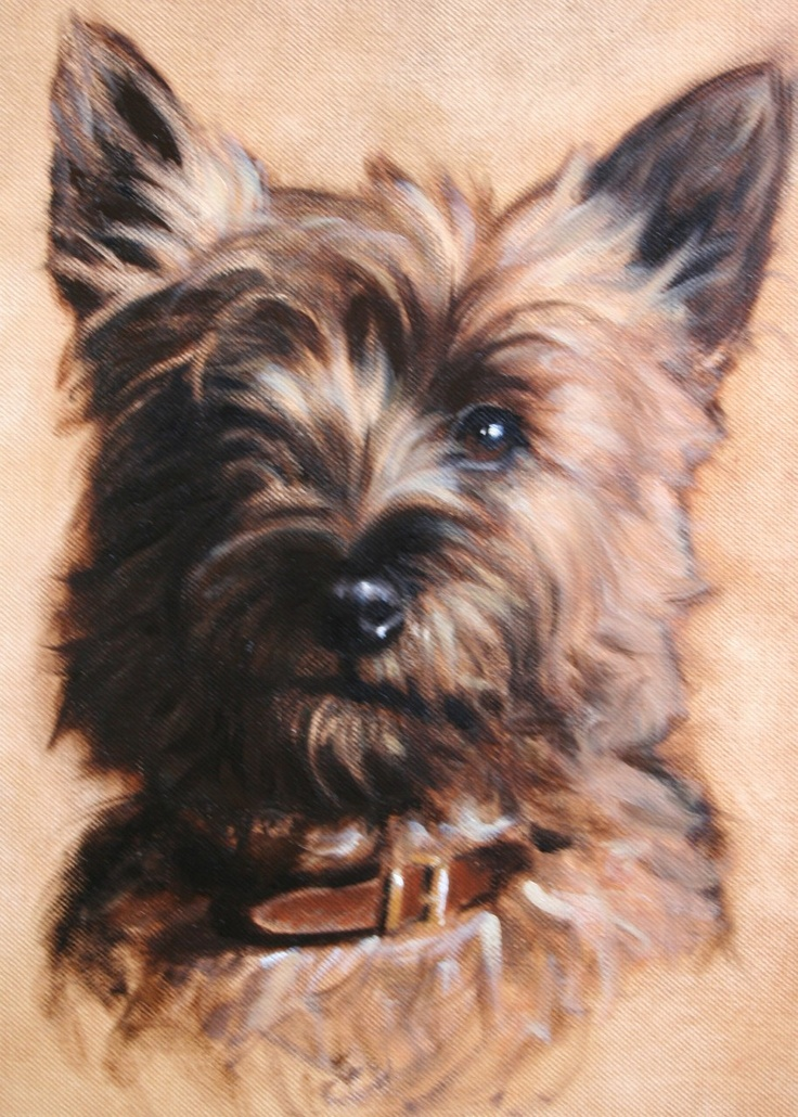 Dogs in Art at the StockBridge Gallery -   Cairn Terrier Painting by Hazel Morgan, SOLD but similar can be painted to order (http://www.dogsinart.com/cairn-terrier-painting-by-hazel-morgan/)