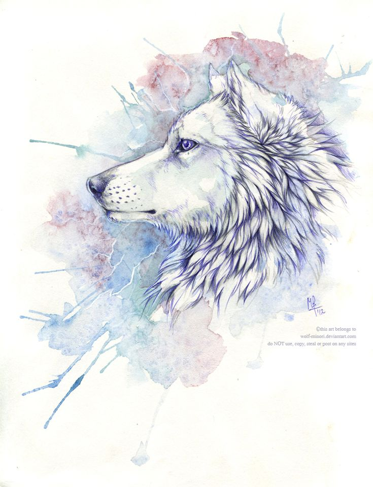 memories by wolf-minori on DeviantArt