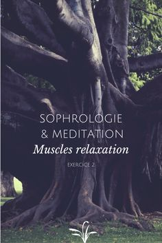 Meditation: relâcher ses muscles et se détendre - relax your muscles - Happy Chantilly