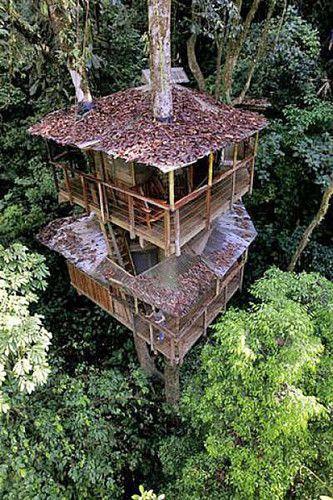 Tree house community in Costa Rica.