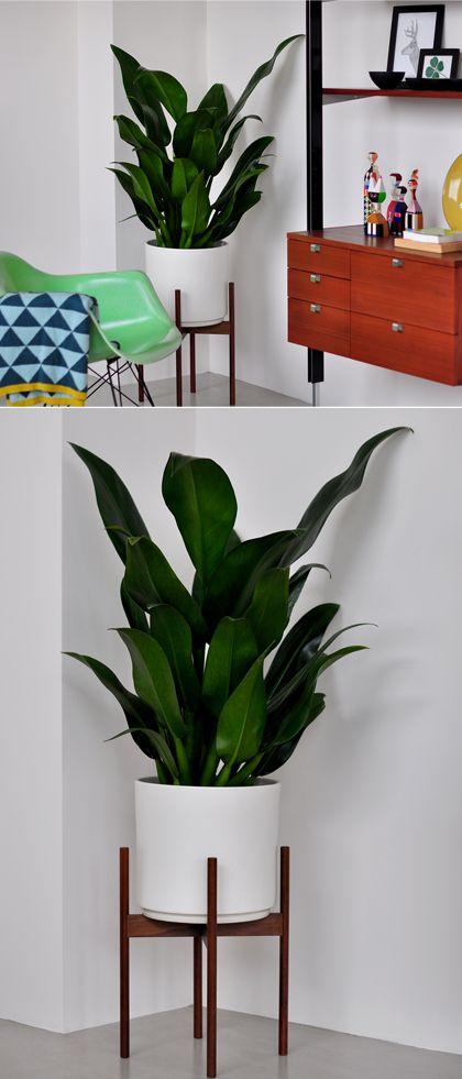 Midcentury Modern Plant Stand -http://www.modernfindings.com/wp-content/uploads/2011/11/case_study_planter_white.jpg