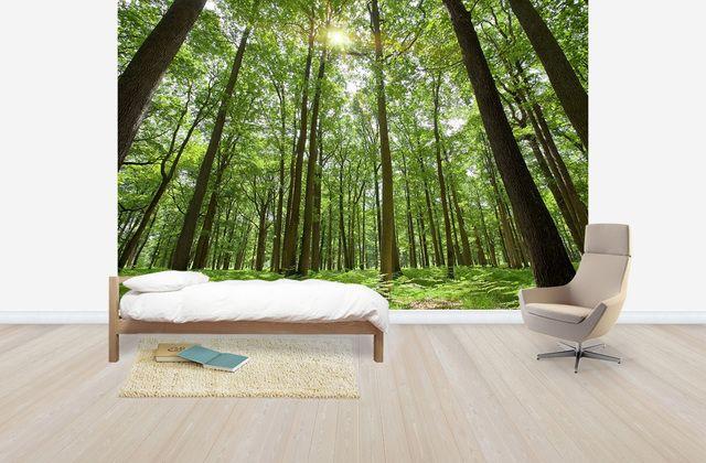 Emerald Green Forest