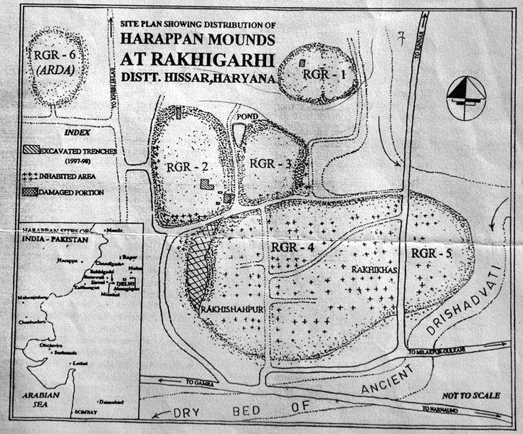 Rakhigarhi-field-siteplan1.jpg (800×665)