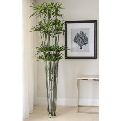 Papyrus in Tapered Vase  #Papyrus #Plantscaping #ResidentialProject #Nature #Decoration #HomeDecor #InteriorDesigner #Miami #DesignDistrict #VillageofMerrickPark #FrenchDesign #HandMadeinUSA