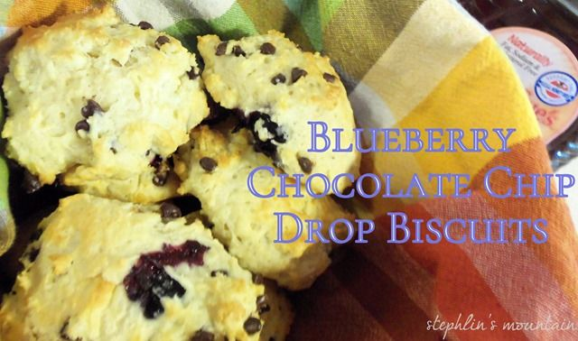 Stephlin's Mountain: Blueberry Chocolate Chip Drop Biscuits