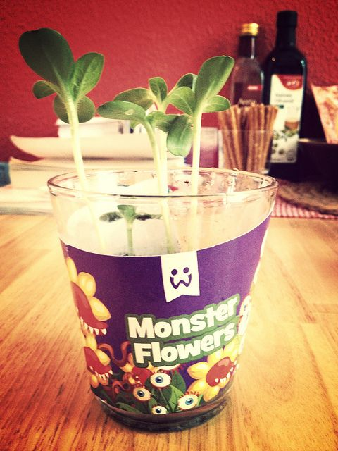 The @Wooga monster flowers are coming along nicely | Flickr - Photo Sharing!