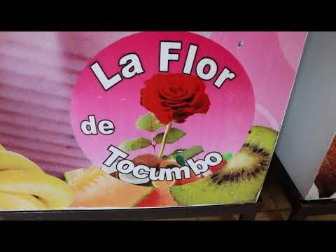 Tocumbo: La capital mundial de las paletas y nieves