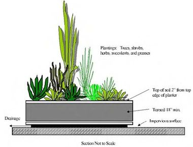 Mini Rain Garden by dec.ny.gov: For placement on pavement or ground. Even on the pavement, these can be helpful. #Rain_Garden #Conservation #Water_Management #dec_ny_gov