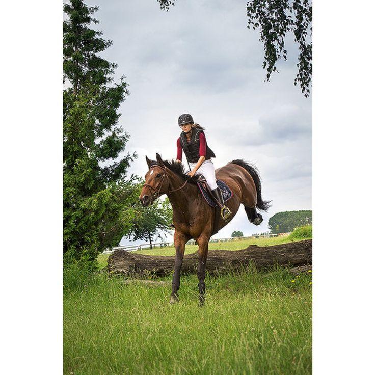 """Gilet protettivo equitazione adulto Equi-thème monta inglese modello """"Air"""""""