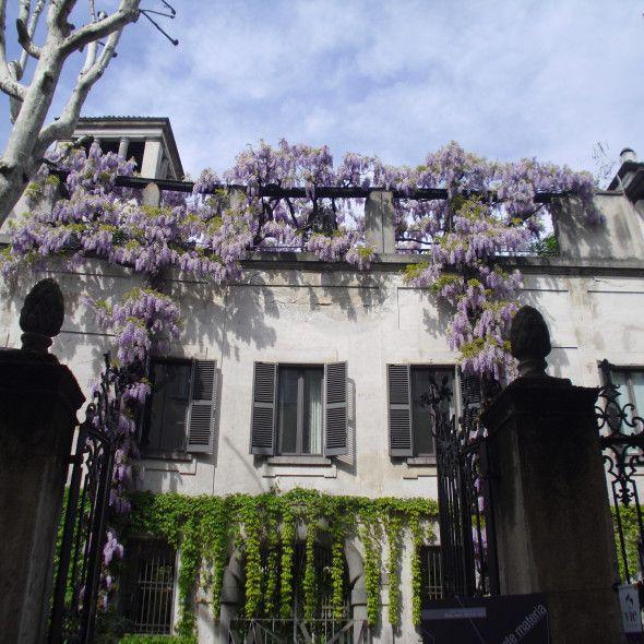https://fuoriloco.wordpress.com/ #milano #italia #italy #prettybuilding #flowers #fuoriloco #beattentive