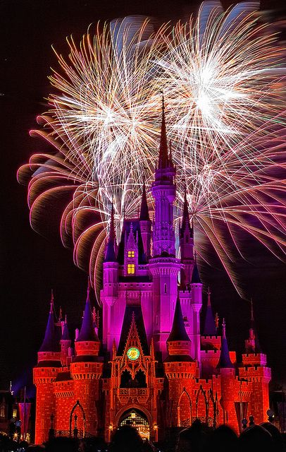 Disney World fireworks are truly one of the most magical things I have ever experienced.