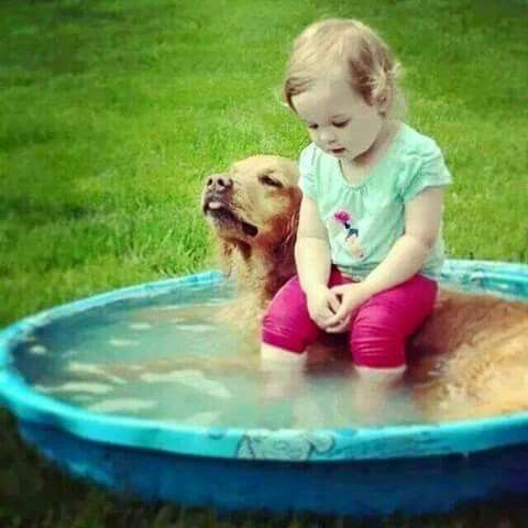 Little girl sitting on a dog, kiddie pool
