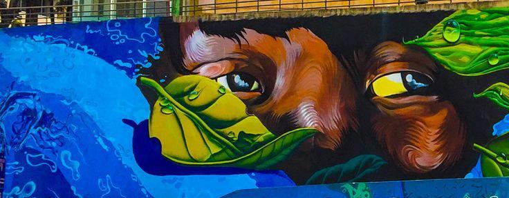 El arte urbano colombiano le pondrá color a Toulouse