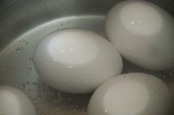 Jedno vařené vejce může pomoci ke kontrole cukru v krvi