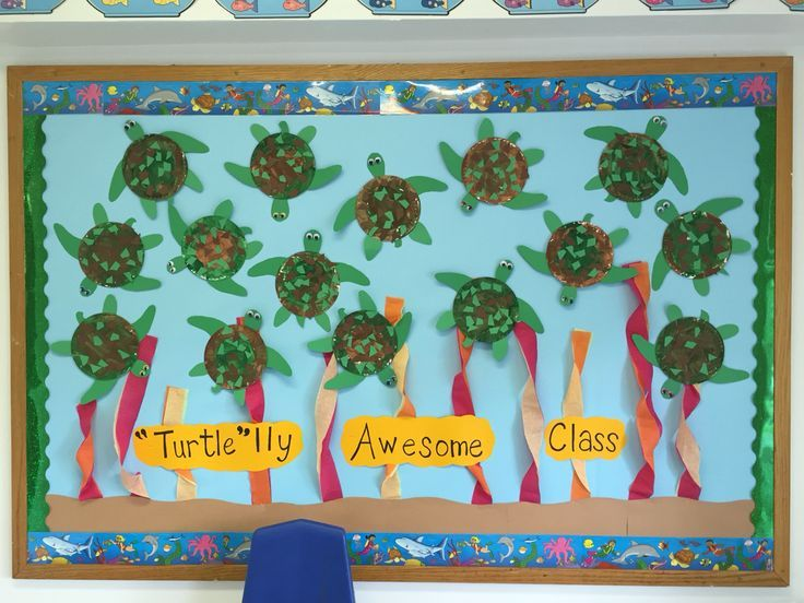 Best 25+ Turtle bulletin board ideas on Pinterest | Back ...
