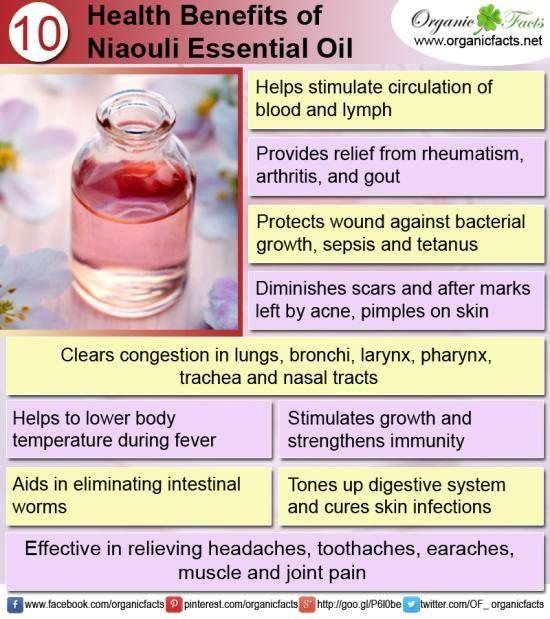 niaouli essential oil info