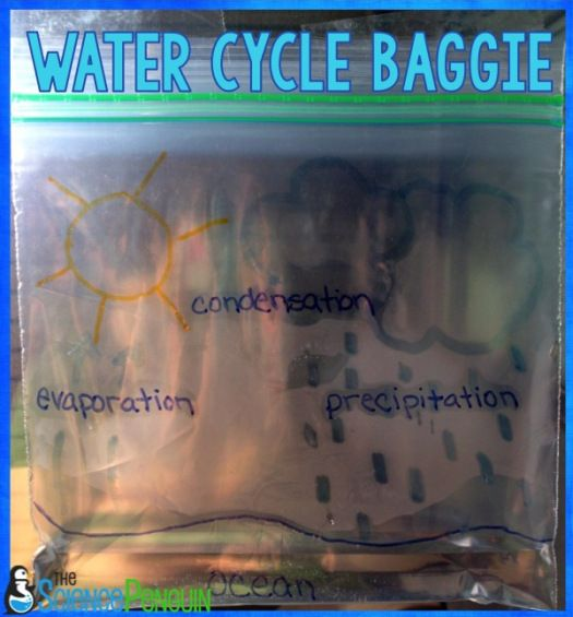 7 Ideas for Teaching the Water Cycle: Water Cycle Baggie