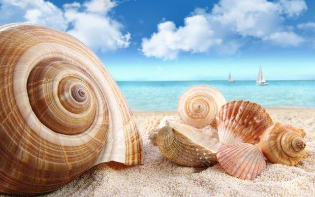 písek, mušle, mraky, moře, plachetnice