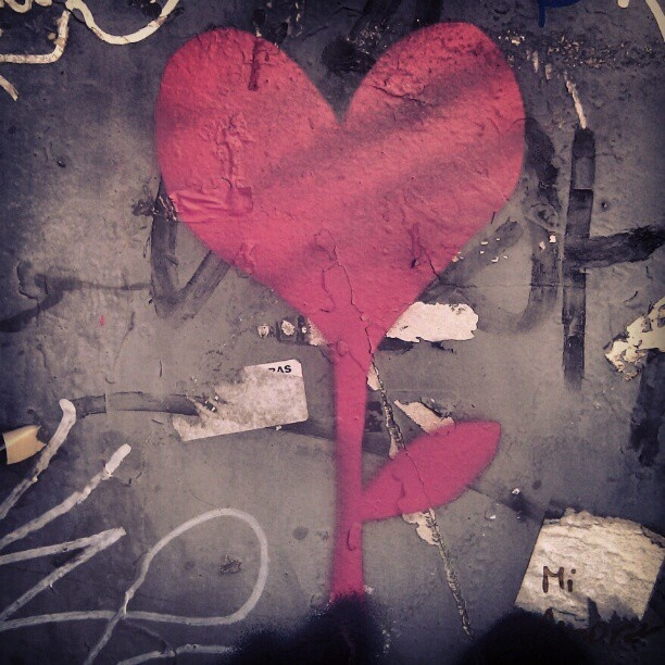 Love is in the Wall