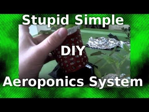 560 Best Gardening Aquaponics Hydroponics Aeroponics 400 x 300