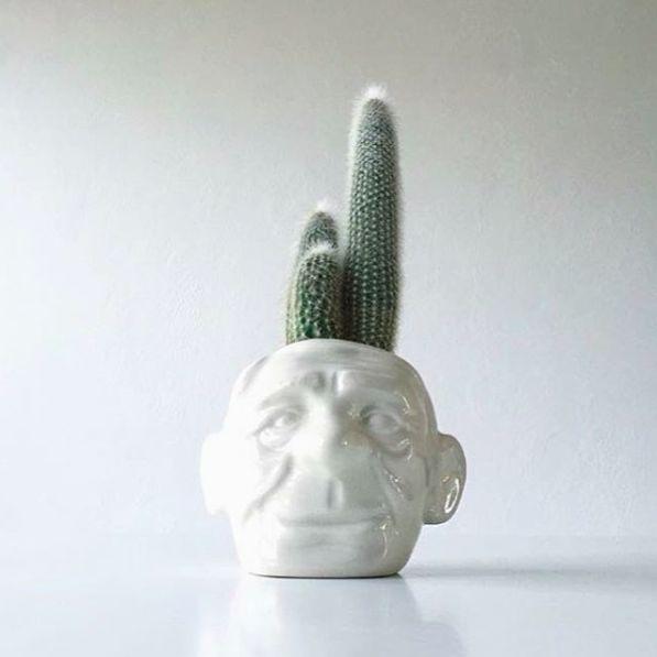 """Livinks dejlige """"Grandpa"""" vase, pyntet med en flot kaktus! #Grandpa #Vase #Livink"""