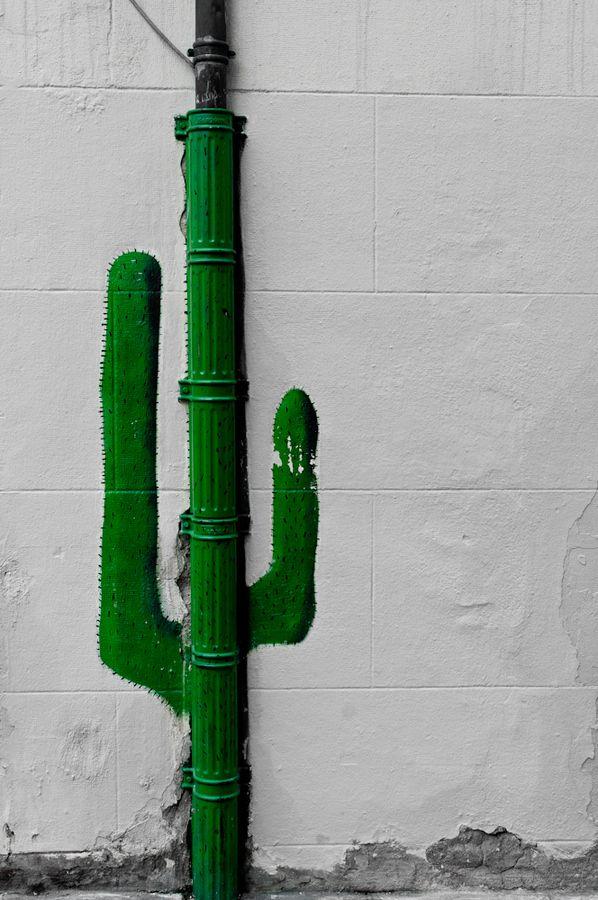 """"""" Le monde entier est un cactus..."""" ( Jacques Dutronc ) / Street art."""