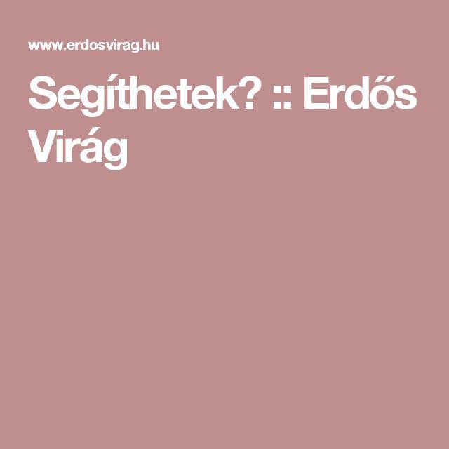 Segíthetek? :: Erdős Virág