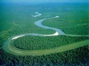 BEAUTIFUL Amazonas