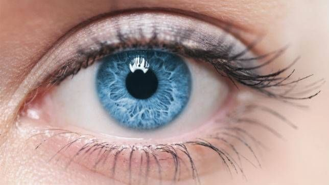 50 insane facts about the eye | MNN - Mother Nature Network