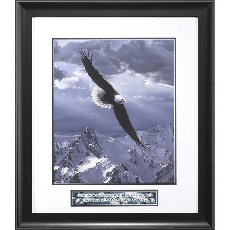 """[""""Sacred Heights features a photo of an eagle soaring above snow covered mountains while light streams through the clouds. Below the photo is Isaiah 40:31, \""""But they that wait upon the Lord shall renew their strength; they shall mount up with wings as eagles.\""""<br><br><strong>Product Details:<\/strong><br>Black frame<br>Dimensions: 26\"""" (W) x 30\"""" (H)""""] $200.00"""