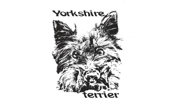 Yorkshire terrier is a Tank Top designed by rostik924 to illustrate your life and is available at Design By Humans