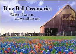 Blue Bell Ice Cream = My Favorite!  Found out I can have four 1/2 gallons shipped to Montana for 120 dollars.  Yes, I love it that much!