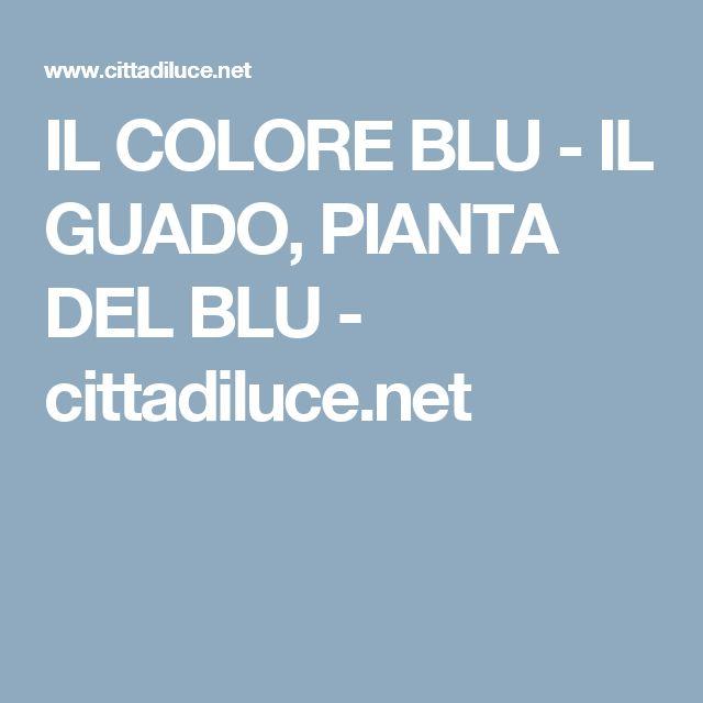 IL COLORE BLU - IL GUADO, PIANTA DEL BLU - cittadiluce.net