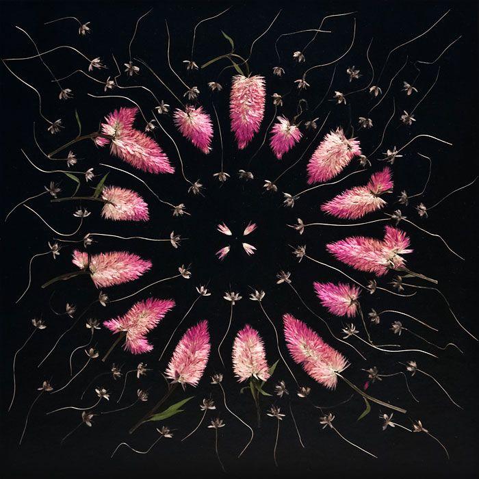 Brautstrauss konserviert, Blütenmandala, Brautstrauss trocknen Alternative, florale Kunst, gotihc hochzeit, schwarze Blumen, schwarze Blüten