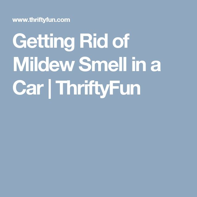 how to get rid of mould smell in car