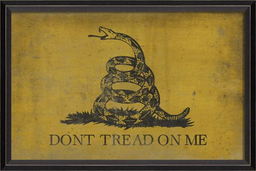This was made by Ben Franklin warning the King to give up and grant America independence. Now we use it to tell the government to let us keep our independence.