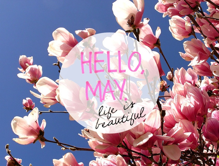 hello days weeks months holidays months ideas holidays hello may hello ...