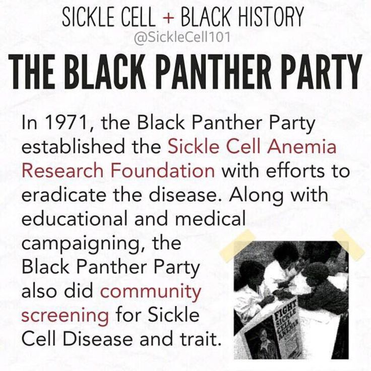 black panther party term paper The black panther party this essay the black panther party and other 62,000+  term papers, college essay examples and free essays are available now on.