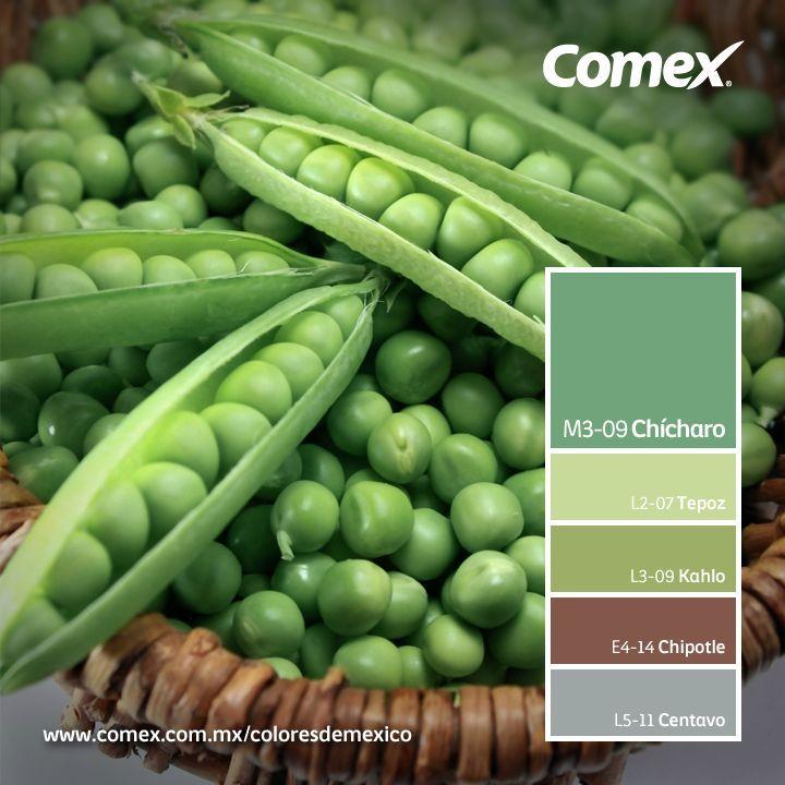 El mundo está lleno de colores. ¡Atrévete a descubrirlos!   #Comex #México #decoración #interiorismo #decoracion #deco #verde #design #interior #interiorismo