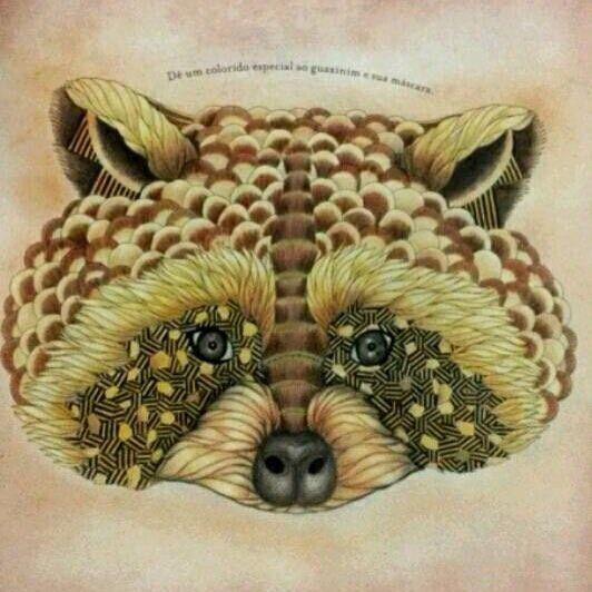 Millie Marotta Animal Kingdom Racoon Neutrals, Browns, Yellows/Golds