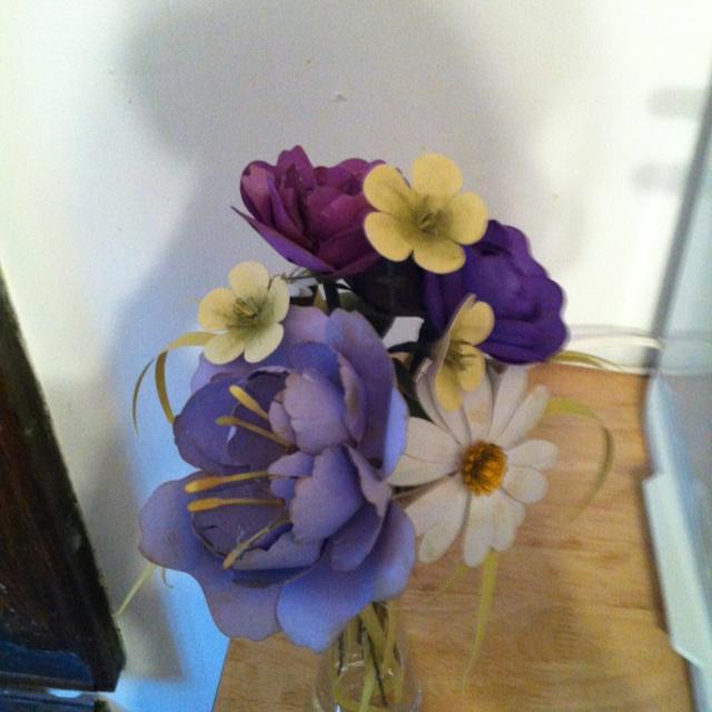 Paper flowers using the cricut!