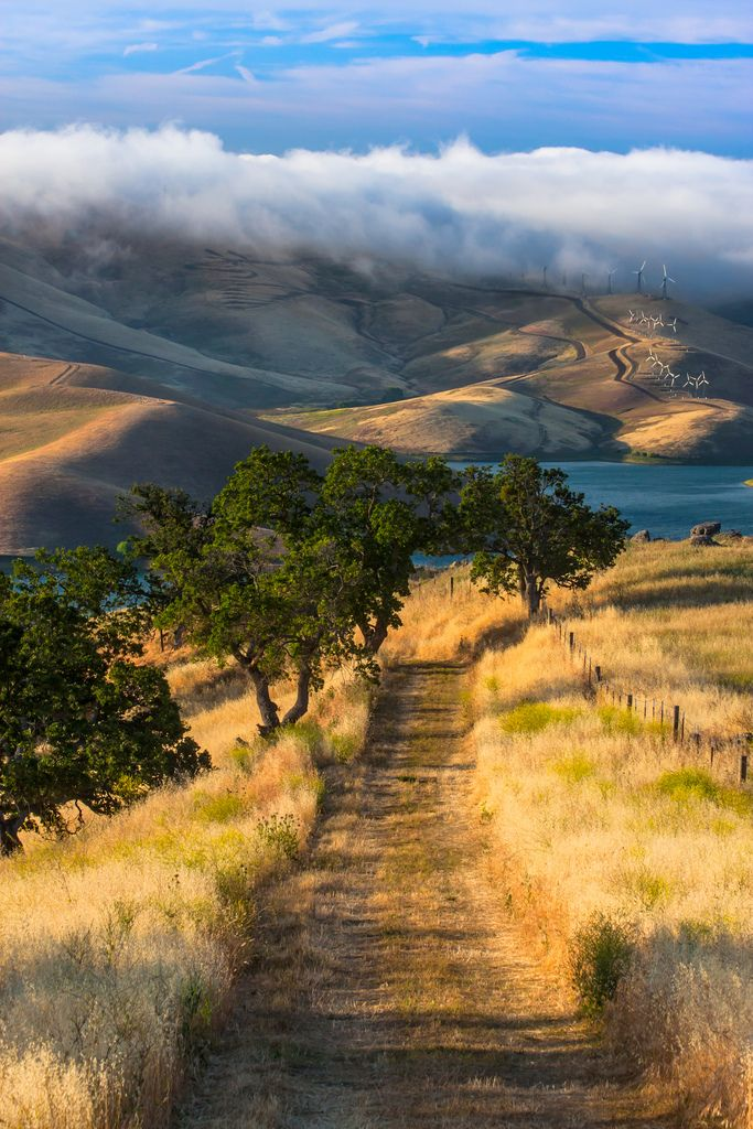 Better view sunrise at los Vaqueros vista grande trail - by Marc Crumpler, USA