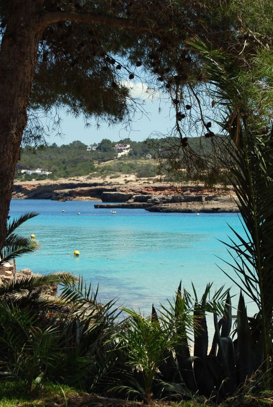 Cala Bassa - San Antonio - Ibiza