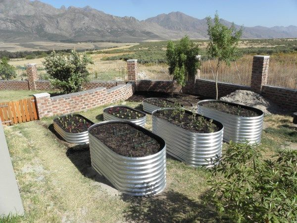 17 Best Images About Garden Beds Corrugated Iron On
