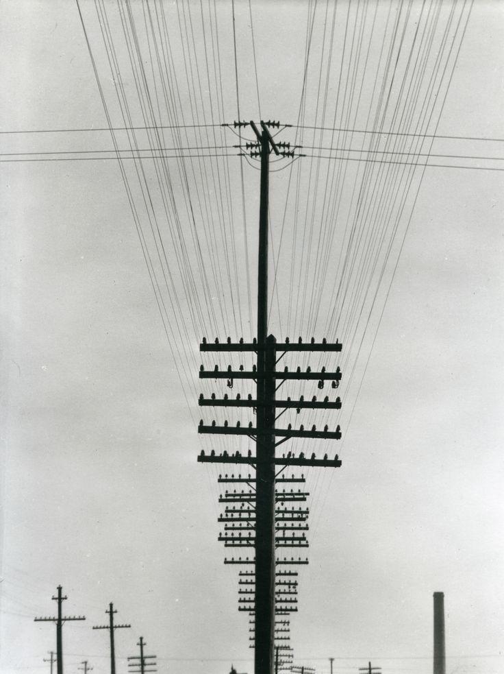 TINA MODOTTI Líneas de teléfonos. Impresión de negativo original del Comitato Tina Modotti. Trieste, Italia.