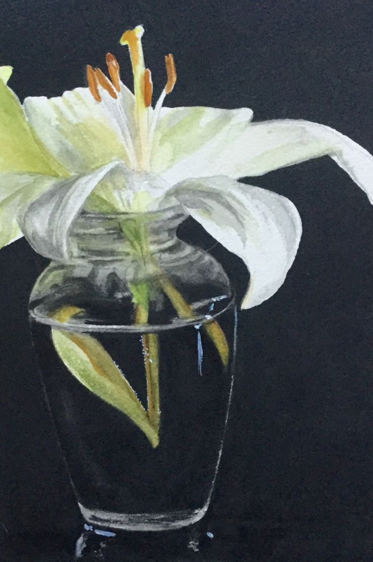 My first try at the White Lily Jacqueline Gnott