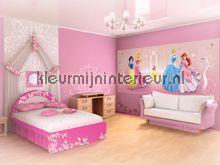 20 best Prinsessen kamer maken images on Pinterest | Canvas ...